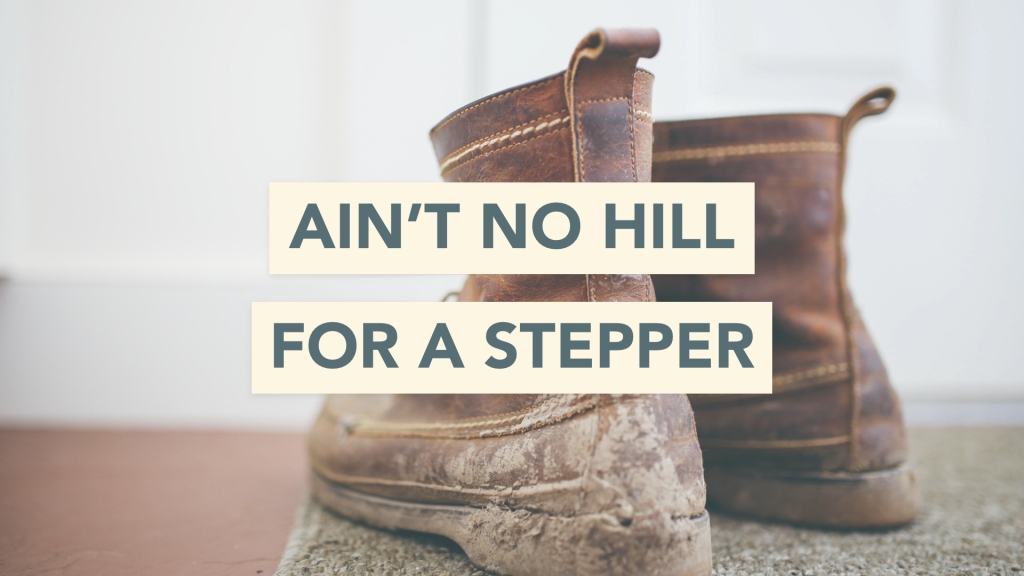 Ain't no hill for a stepper.